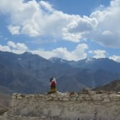 Medical Camp Ladakh 2014 (26)