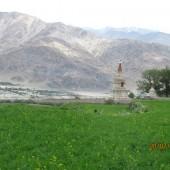 Medical Camp Ladakh 2014 (3)