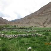 Medical Camp Ladakh 2014 (4)