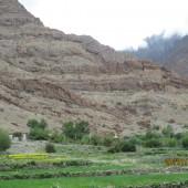 Medical Camp Ladakh 2014 (5)
